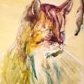 Yupo Cat
