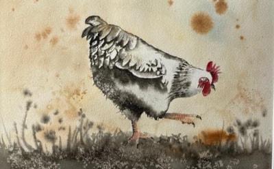 chicken by Bennett.j