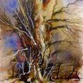 Oak Tree Study 1
