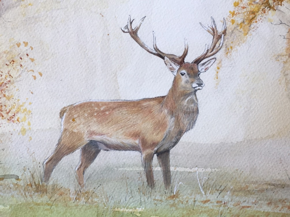 Stag detail from Autumn Stag