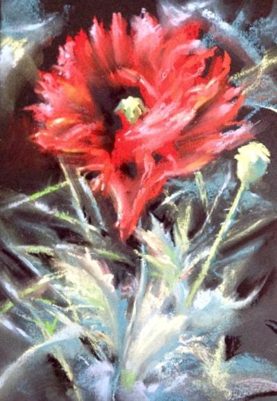 Fiona's poppy