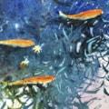 Chartwell Goldfish watercolour