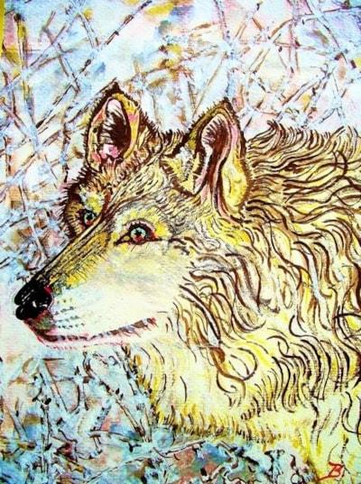 A Gentle Wolf