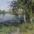 Birches on Krasnoselsky