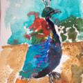Nepalese Pheasant