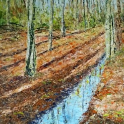 Narrow stream Londg Shadows Worsley woods