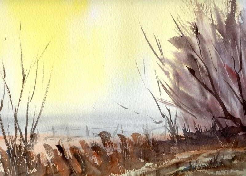 ' Fen Farmland'