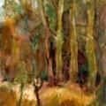 wood near Welton