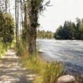 Dappled Path, RiverSide