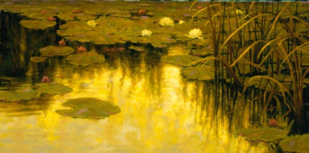 Lily Pond Evening