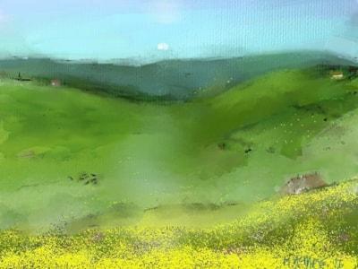 Hay meadows, Upper Weardale, Co. Durham.