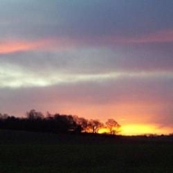 Winters Dawn.