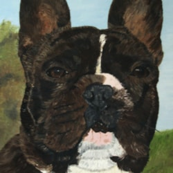 French Bulldog (I think) - Oil on Stretched Canvas