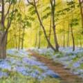 Bluebells - Brayton Barff