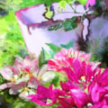 Flowers And A Rusty Bucket