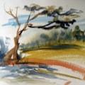 Ten min sketch Zambia.