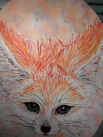 Another Fennec  Fox