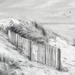 Dune Shadows, Camber