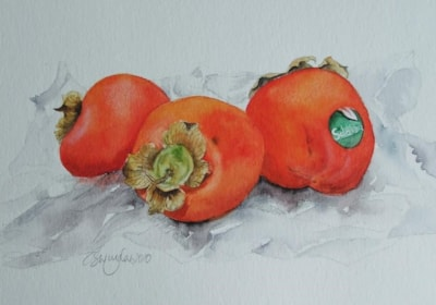 Sharon Fruit (Persimmons)