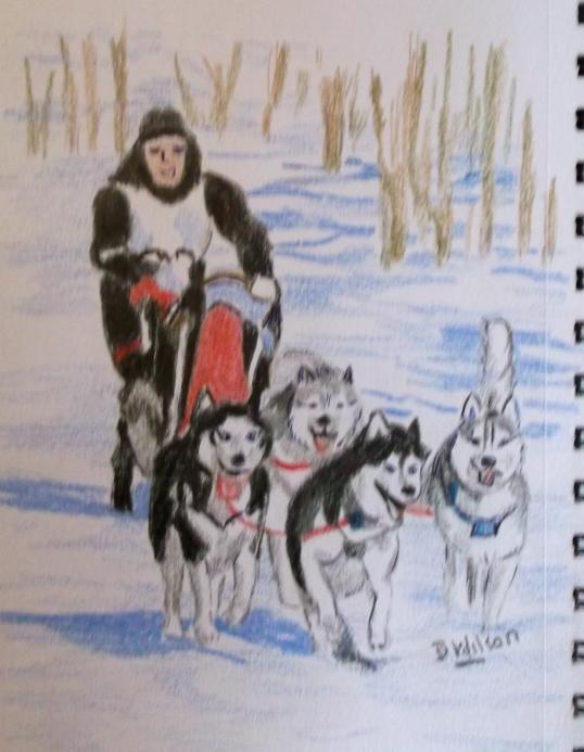 dog sleigh
