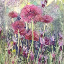 Alliums and lavender