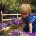 Picking Purple