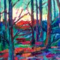 'First Light' - Dorset Woodland scene.