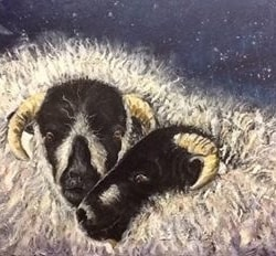 Sheep and a Crescent Moon