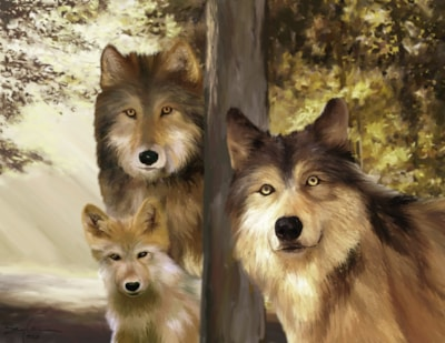 Family, Wolf