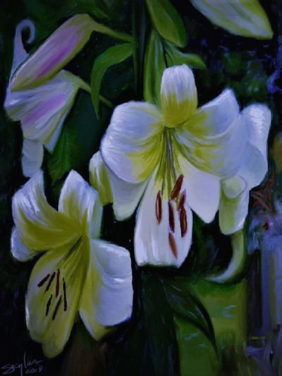 Lilies In The Moonlight