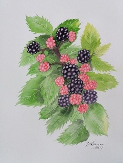 Blackberry Tart for Tea