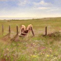 Summer meadow near The Bathing House