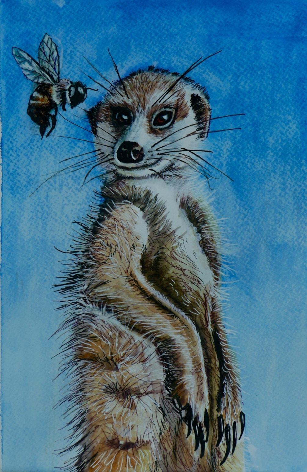 Meerkat and Bee