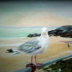 Sid the seagull