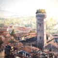 Guinigi tower Lucca from the clock tower
