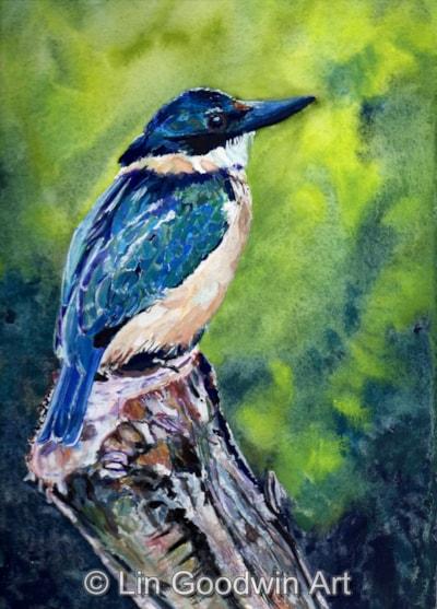 Non-British Kingfisher
