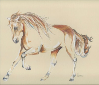 Essence of the horse