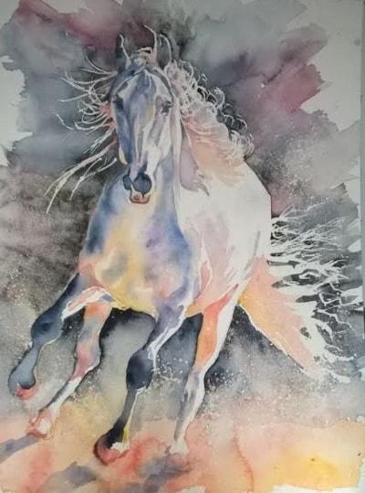 Equine light