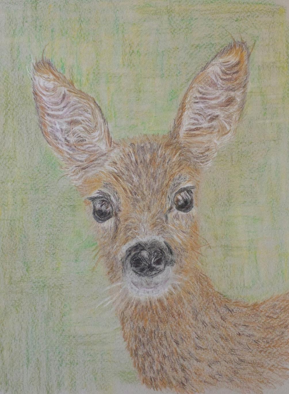 Paul hopkinson deer exercise from summer 2018 issue