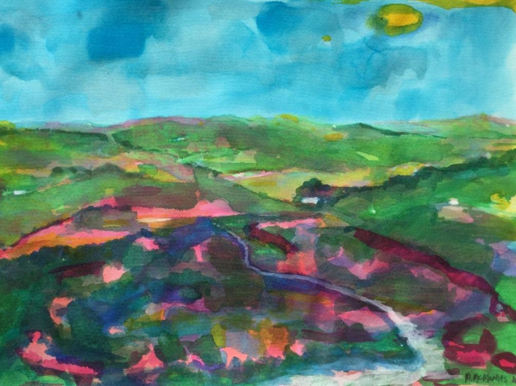 West Durham heather moors