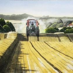 Suffolk Harvest