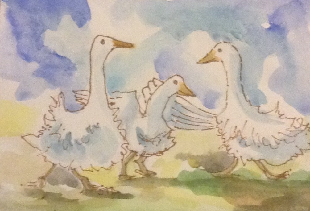 Frilly Geese