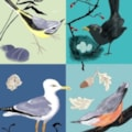 Birds Quartet - iPad Art