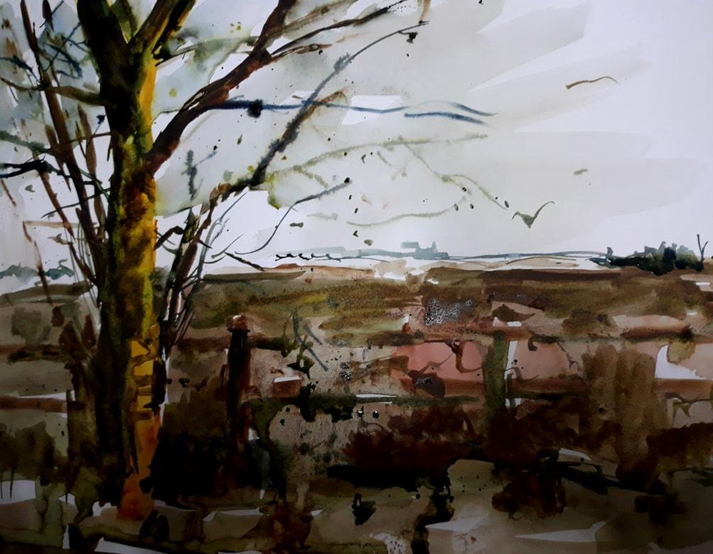 Landscaped a