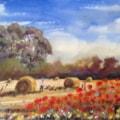Harvest (ii)