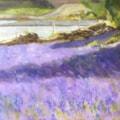 Sylvia's Bluebells (Loch Lomond)