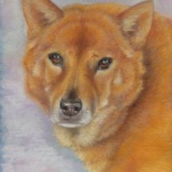 """Sebastian"" Dog Portrait on request."