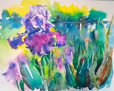 Pond side Iris