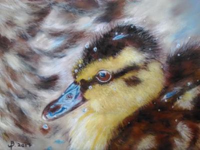 'Duckling'
