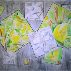 Evening primrose cubist style